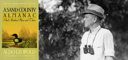 21 Quotes From Aldo Leopold