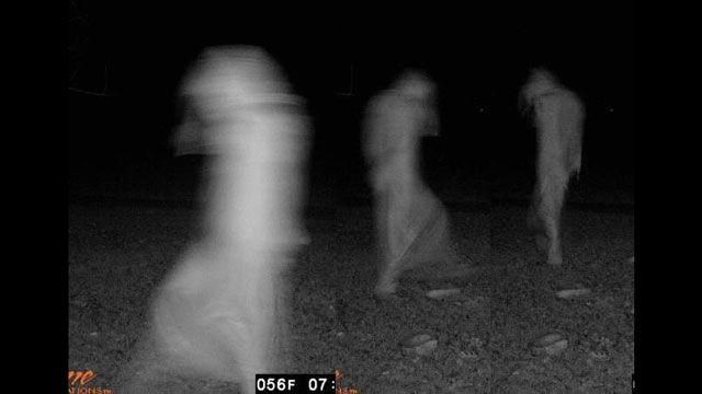 Ghouls like to party too Scary Deer Cam Pictures