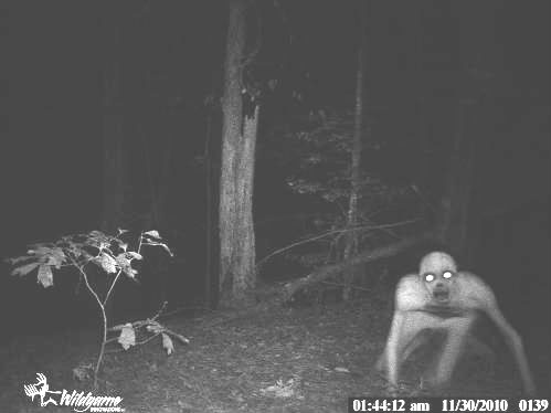 These Spooky Trail Cam Photos Will Send Shivers Down Your Spine
