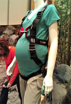 Baby On Board  Climbing Harness Made For Pregnant Women